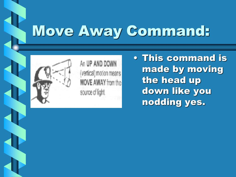 Come Forward Command: This command is simple. Rotate head in a wide circular motion.This command is simple. Rotate head in a wide circular motion.