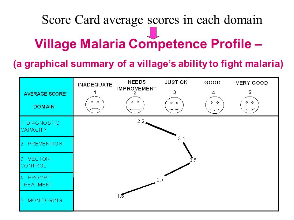 Village Malaria Competence Profile Each village designs its own Local Anti-Malarial Programme (LAMP)