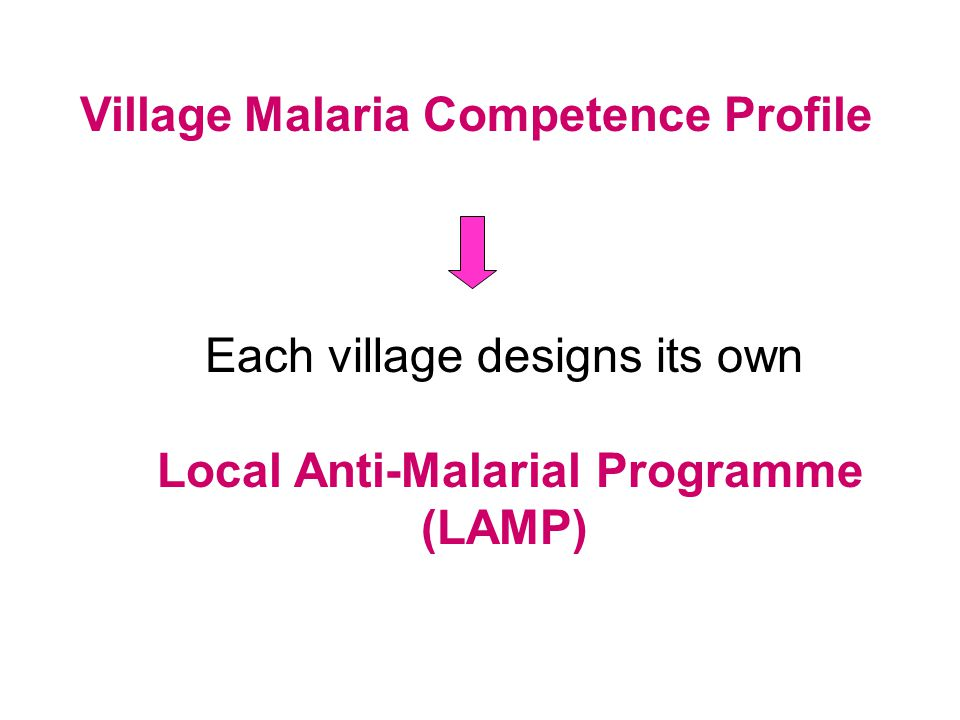 Intervention Options for individual village LAMPs Examples: Sewing of local bednets (income-generating activity) Promoting bednet use and retreatment Vector control measures Local protocols for prompt diagnosis and treatment Possible use of natural prophylactics and remedies (Neem or Artemisinin Tea) Pregnant women support groups Training and assisting the Community Medicine Distributors