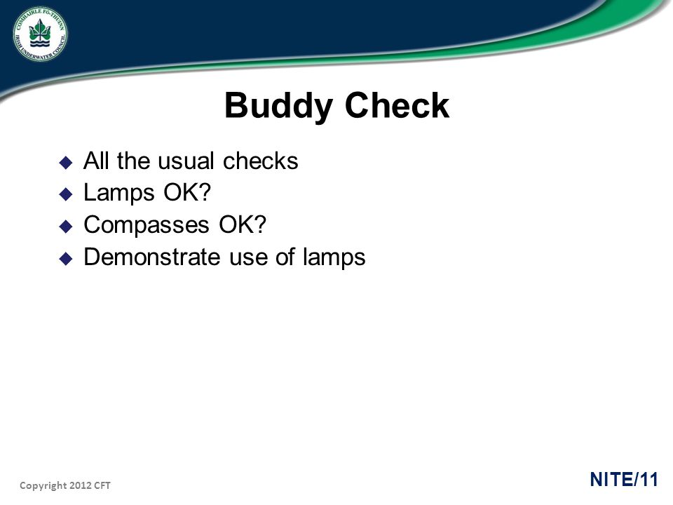 Copyright 2012 CFT NITE/11 Buddy Check All the usual checks Lamps OK.