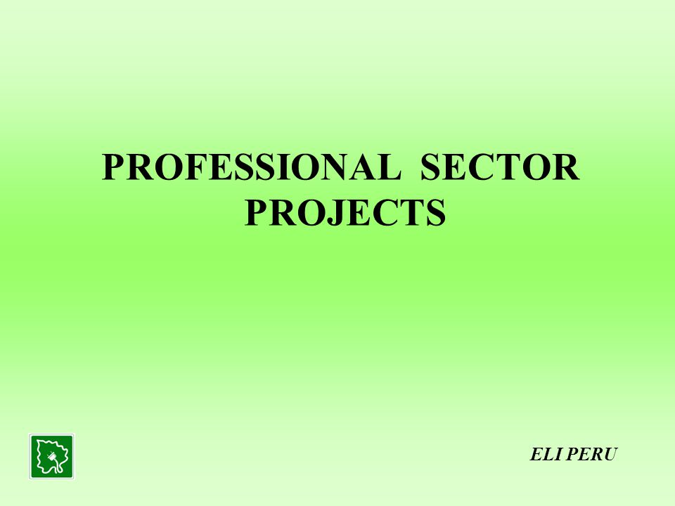 PROFESSIONAL SECTOR PROJECTS ELI PERU