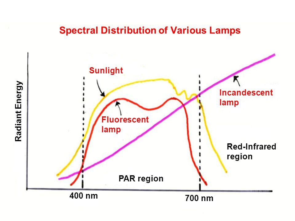 Spectral Distribution of Various Lamps Sunlight Incandescent lamp Fluorescent lamp PAR region Red-Infrared region 400 nm 700 nm Radiant Energy Spectral Distribution of Various Lamps