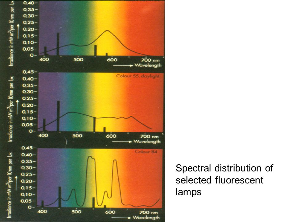 Spectral distribution of selected fluorescent lamps