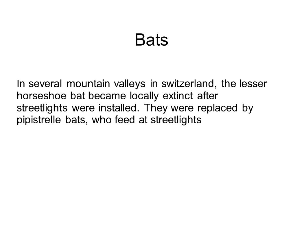 I n several mountain valleys in switzerland, the lesser horseshoe bat became locally extinct after streetlights were installed.