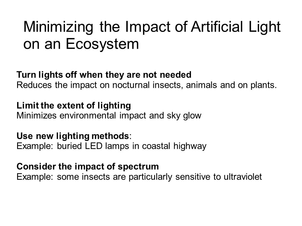 Minimizing the Impact of Artificial Light on an Ecosystem Turn lights off when they are not needed Reduces the impact on nocturnal insects, animals and on plants.