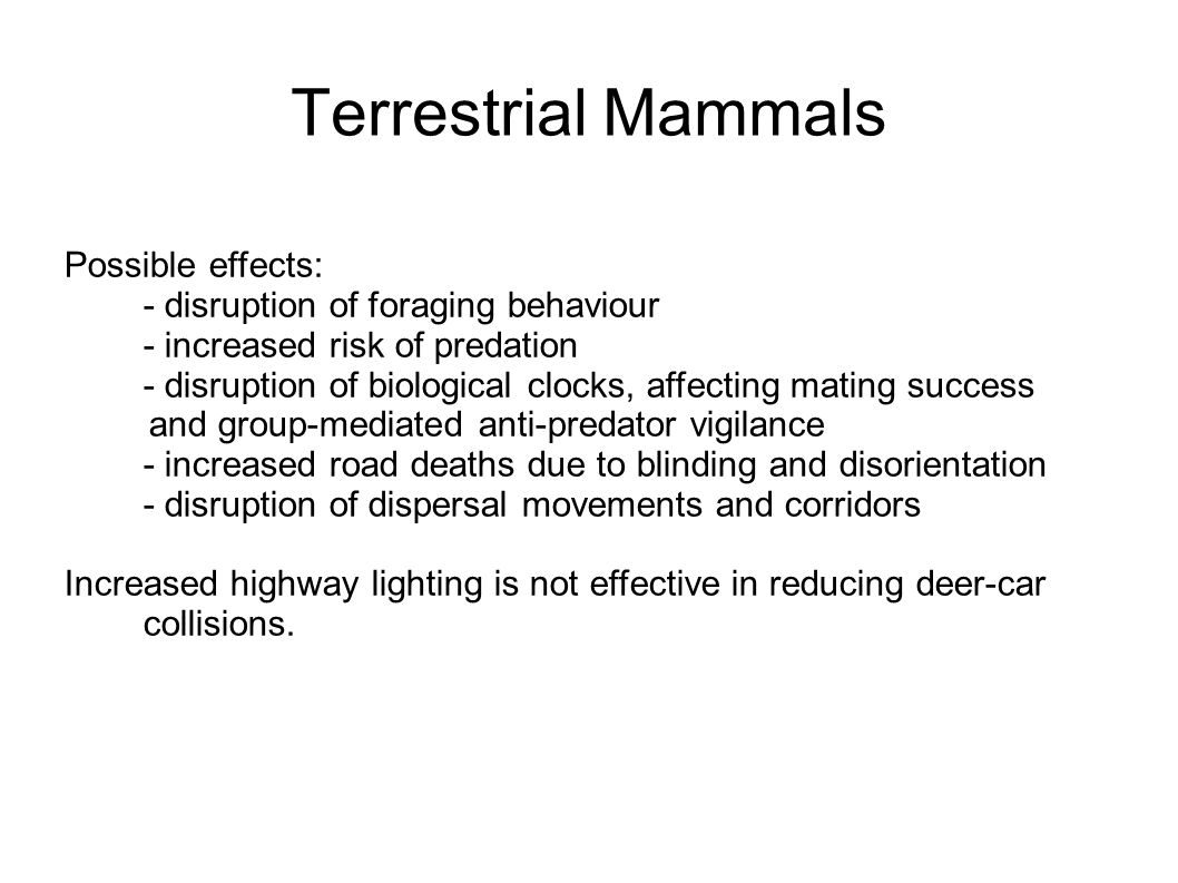 Possible effects: - disruption of foraging behaviour - increased risk of predation - disruption of biological clocks, affecting mating success and group-mediated anti-predator vigilance - increased road deaths due to blinding and disorientation - disruption of dispersal movements and corridors Increased highway lighting is not effective in reducing deer-car collisions.