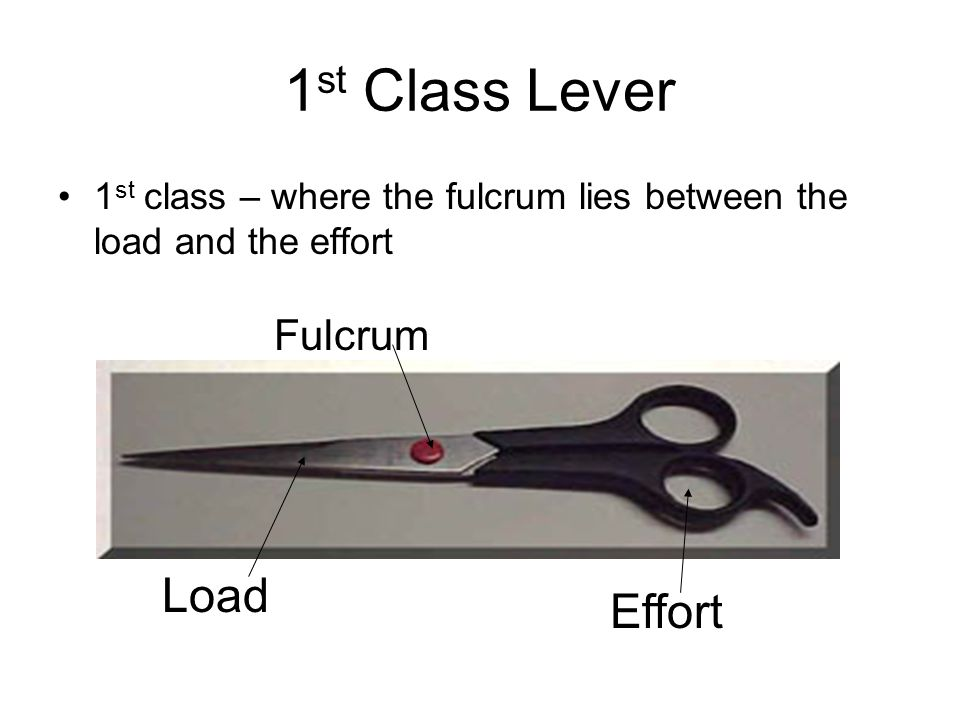 1 st Class Lever 1 st class – where the fulcrum lies between the load and the effort Effort Load Fulcrum