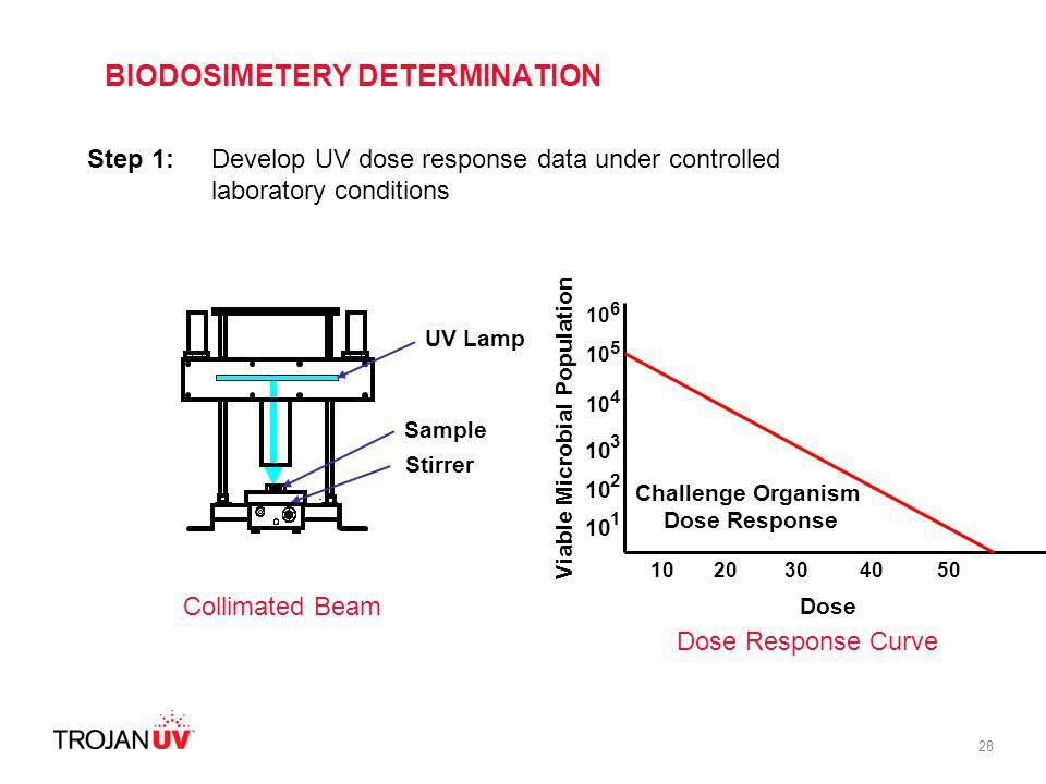 28 Step 1: Develop UV dose response data under controlled laboratory conditions Collimated Beam Sample Stirrer UV Lamp Viable Microbial Population 10