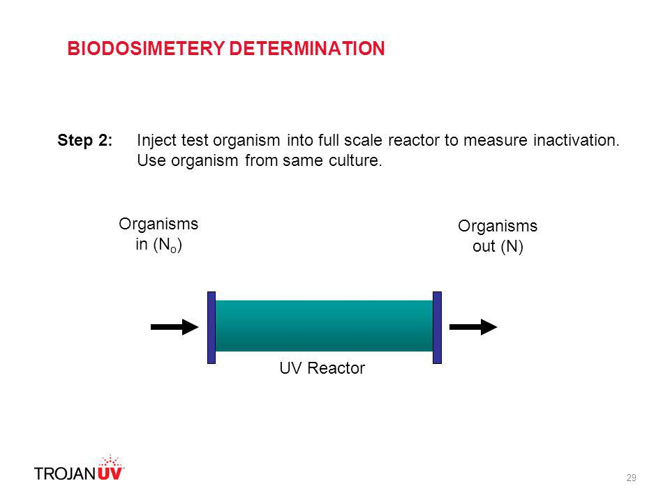 29 Step 2: Inject test organism into full scale reactor to measure inactivation. Use organism from same culture. Organisms in (N o ) Organisms out (N)