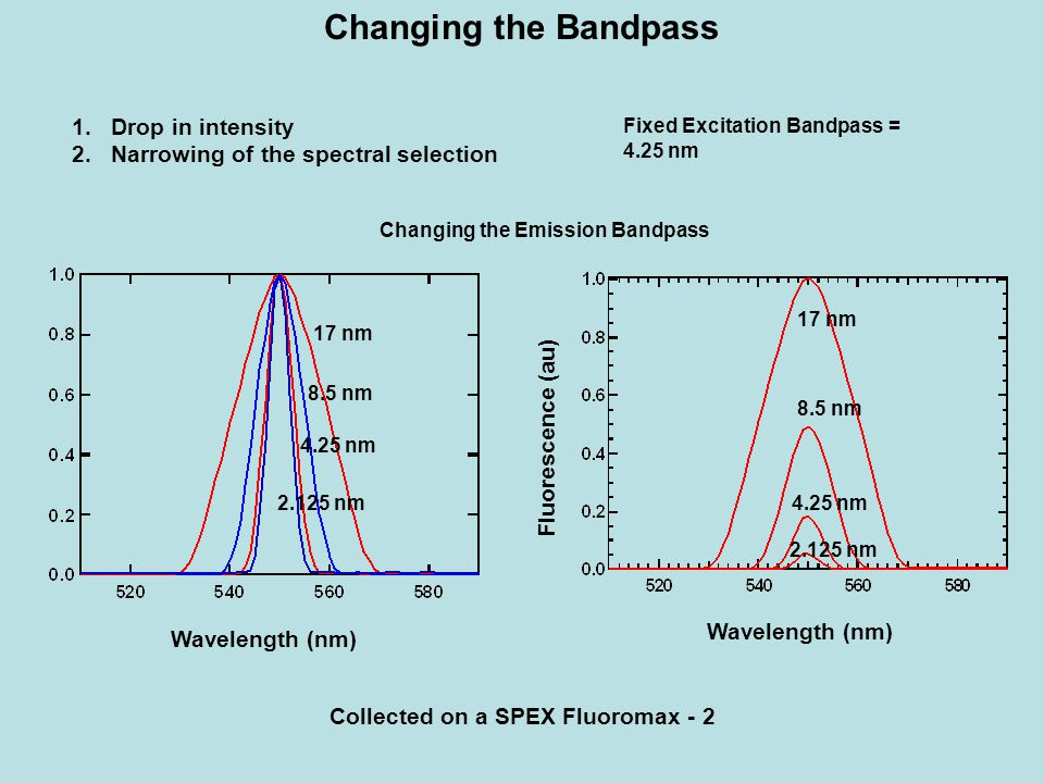 Changing the Bandpass Fixed Excitation Bandpass = 4.25 nm 17 nm 2.125 nm 4.25 nm 8.5 nm 1.Drop in intensity 2.Narrowing of the spectral selection Fluo
