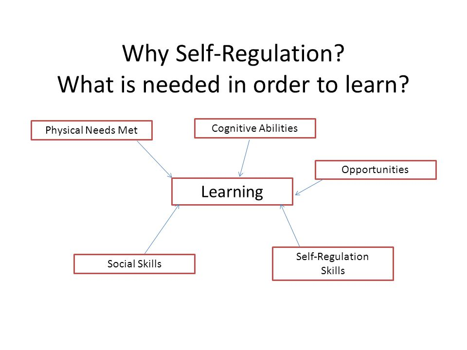 Why Self-Regulation? What is needed in order to learn? Learning Physical Needs Met Cognitive Abilities Social Skills Self-Regulation Skills Opportunit