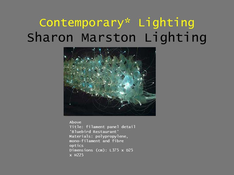 Contemporary* Lighting Sharon Marston Lighting Above Title: filament panel detail 'Bluebird Restaurant' Materials: polypropylene, mono-filament and fi