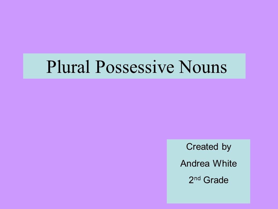 Plural Possessive Nouns Created by Andrea White 2 nd Grade