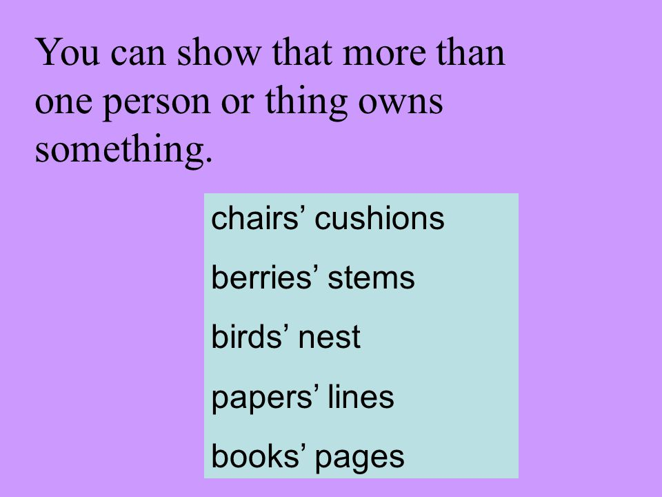 You can show that more than one person or thing owns something. chairs cushions berries stems birds nest papers lines books pages