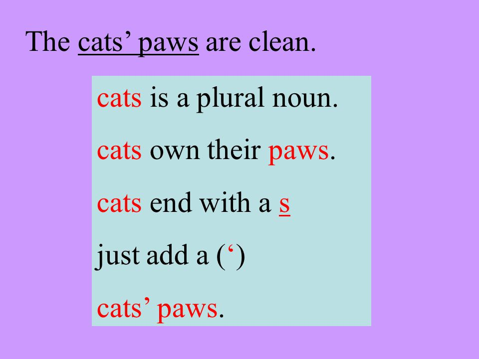 The cats paws are clean. cats is a plural noun. cats own their paws.