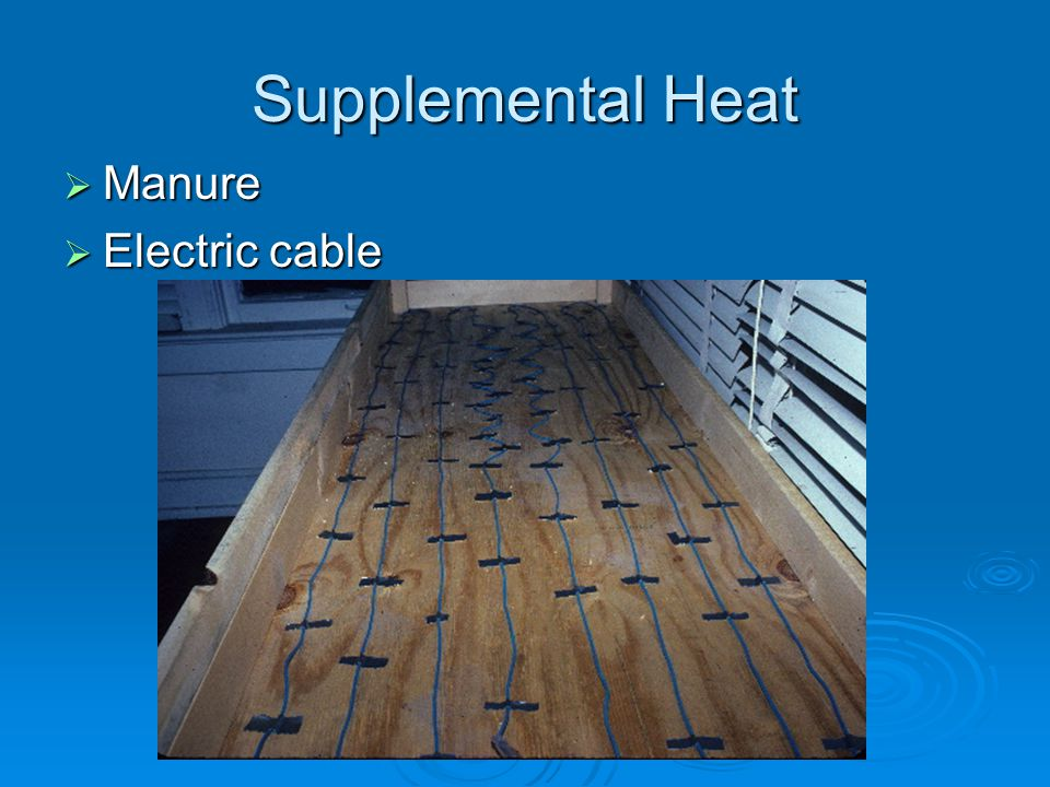 Supplemental Heat Manure Manure Electric cable Electric cable
