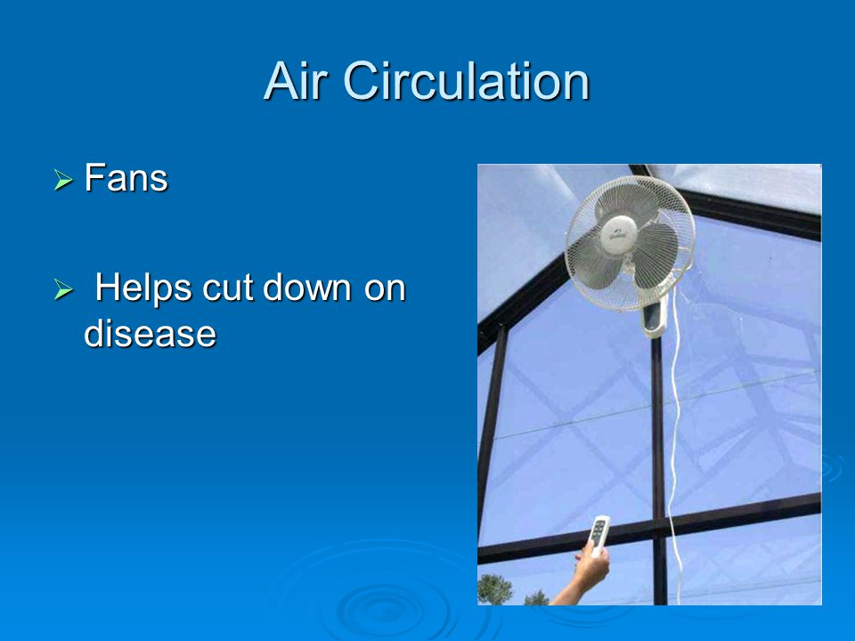 Air Circulation Fans Fans Helps cut down on disease Helps cut down on disease