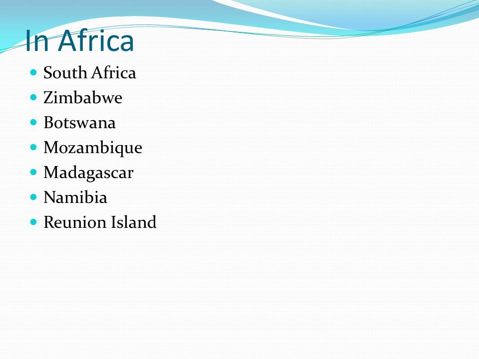 In Africa South Africa Zimbabwe Botswana Mozambique Madagascar Namibia Reunion Island