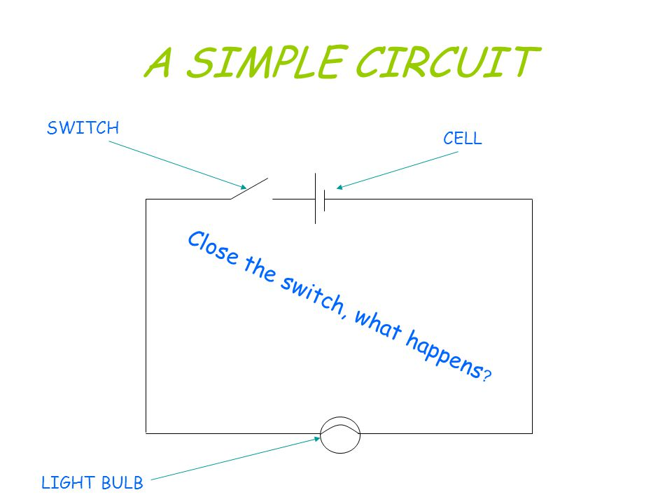 Electric Circuits How many ways can you make two light bulbs work?