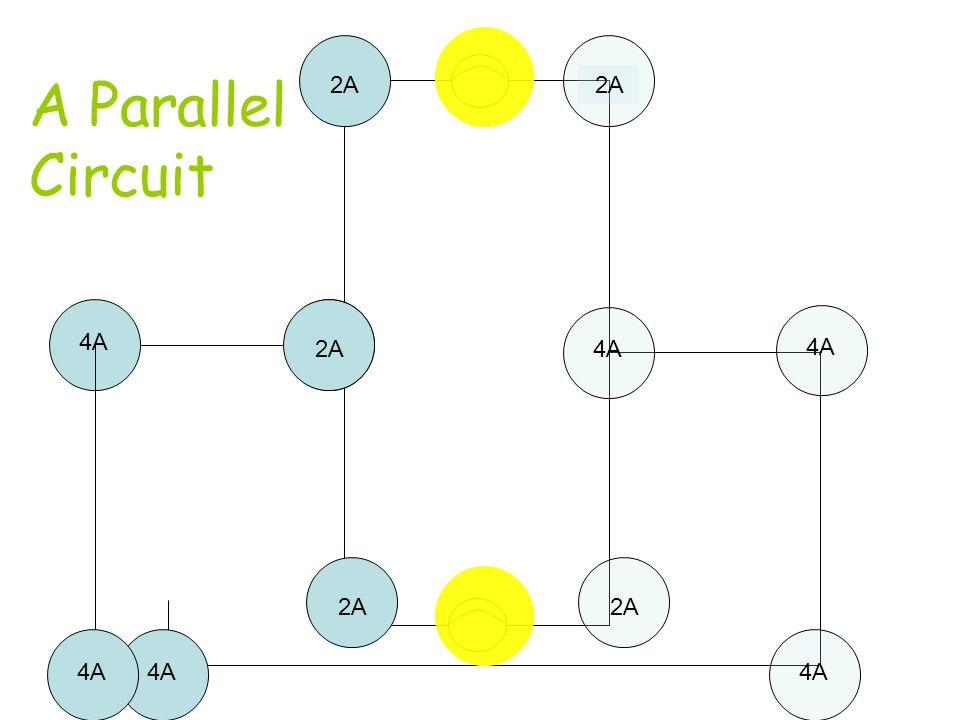 A Parallel Circuit What happens now?