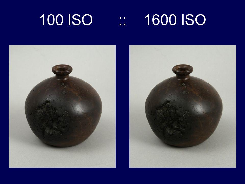 100 ISO :: 1600 ISO