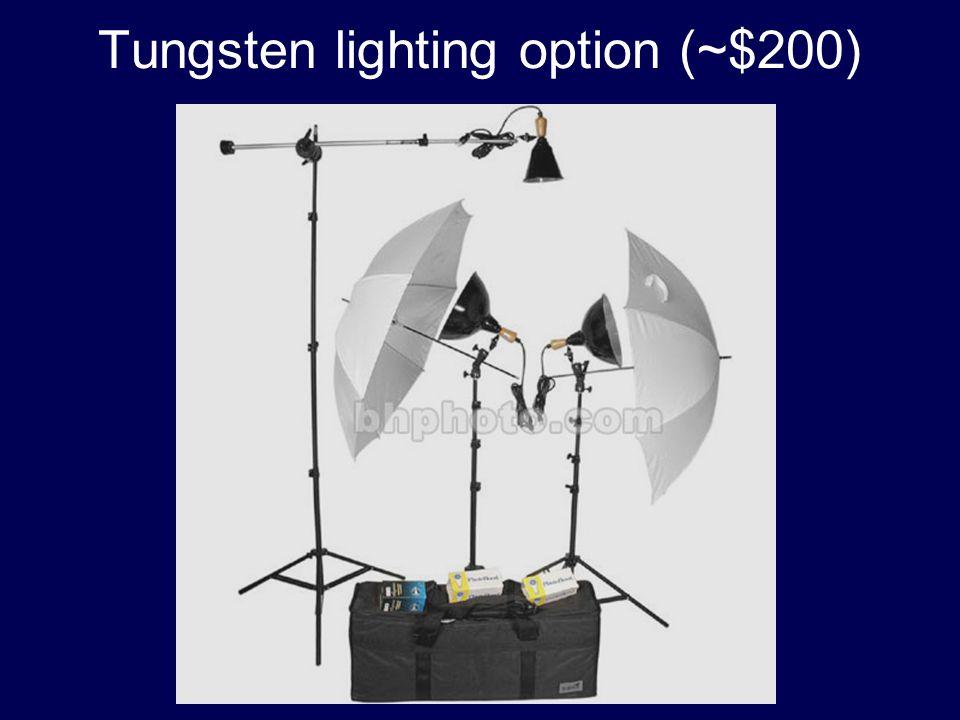 Tungsten lighting option (~$200)