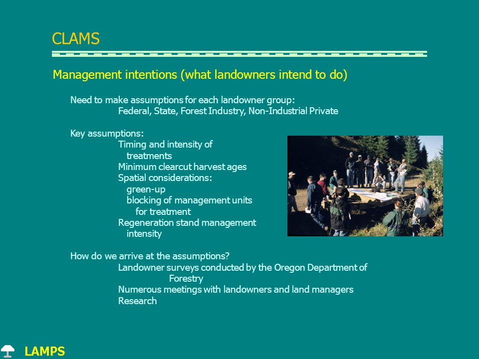 Management intentions (what landowners intend to do) Need to make assumptions for each landowner group: Federal, State, Forest Industry, Non-Industrial Private Key assumptions: Timing and intensity of treatments Minimum clearcut harvest ages Spatial considerations: green-up blocking of management units for treatment Regeneration stand management intensity How do we arrive at the assumptions.