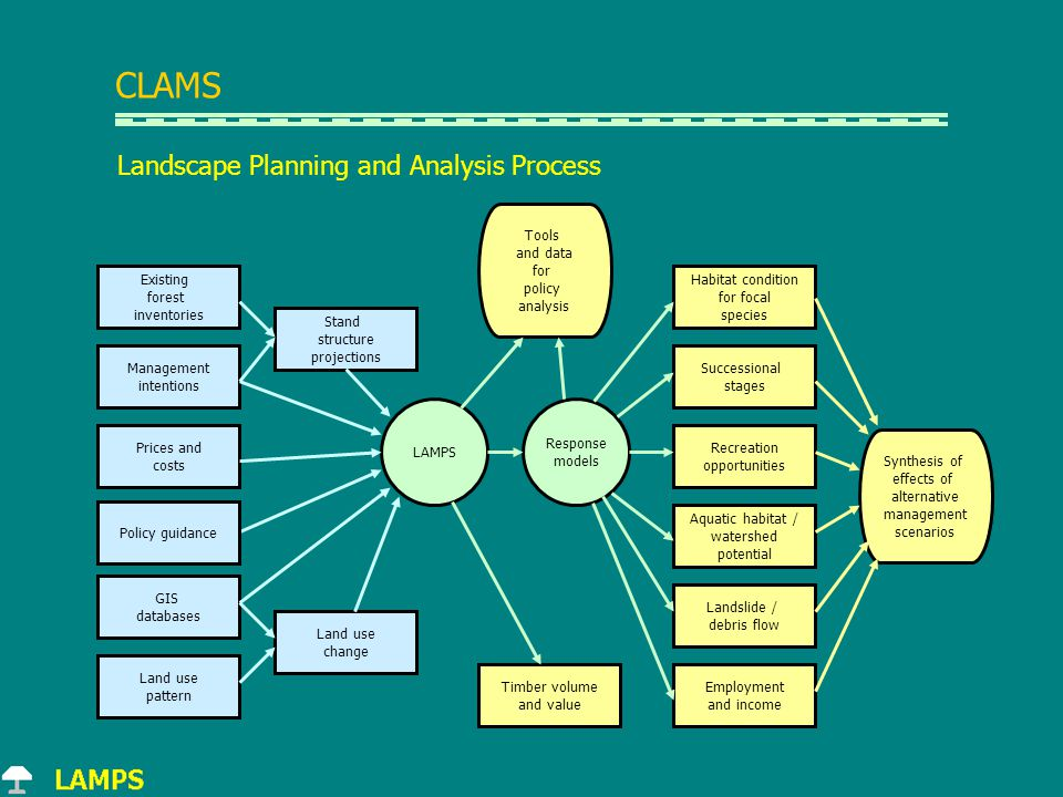 Landscape Planning and Analysis Process CLAMS Existing forest inventories Management intentions Prices and costs GIS databases Land use pattern Land use change Stand structure projections LAMPS Response models Timber volume and value Habitat condition for focal species Successional stages Recreation opportunities Aquatic habitat / watershed potential Landslide / debris flow Employment and income Synthesis of effects of alternative management scenarios Tools and data for policy analysis Policy guidance