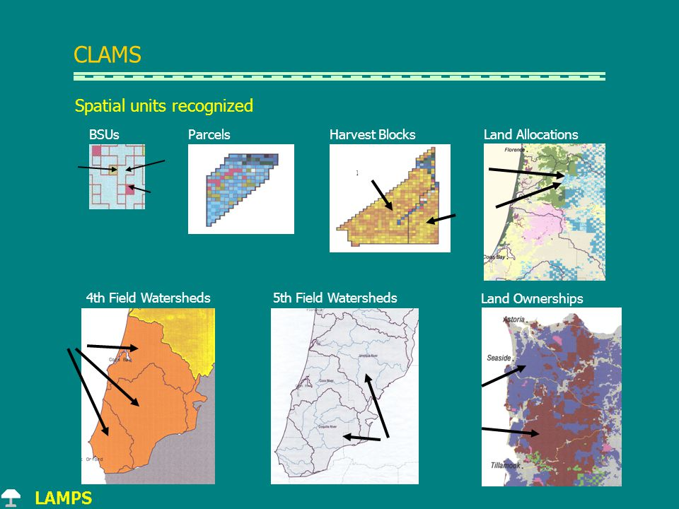 l 5th Field Watersheds4th Field Watersheds Land Ownerships Harvest BlocksLand AllocationsBSUsParcels Spatial units recognized CLAMS