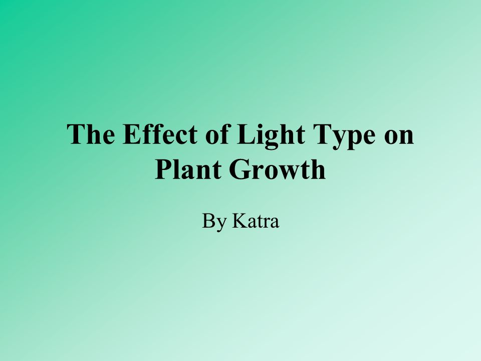 The Effect of Light Type on Plant Growth By Katra