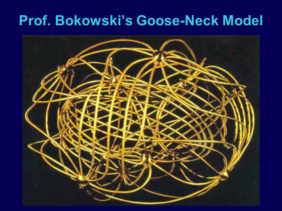 Prof. Bokowskis Goose-Neck Model