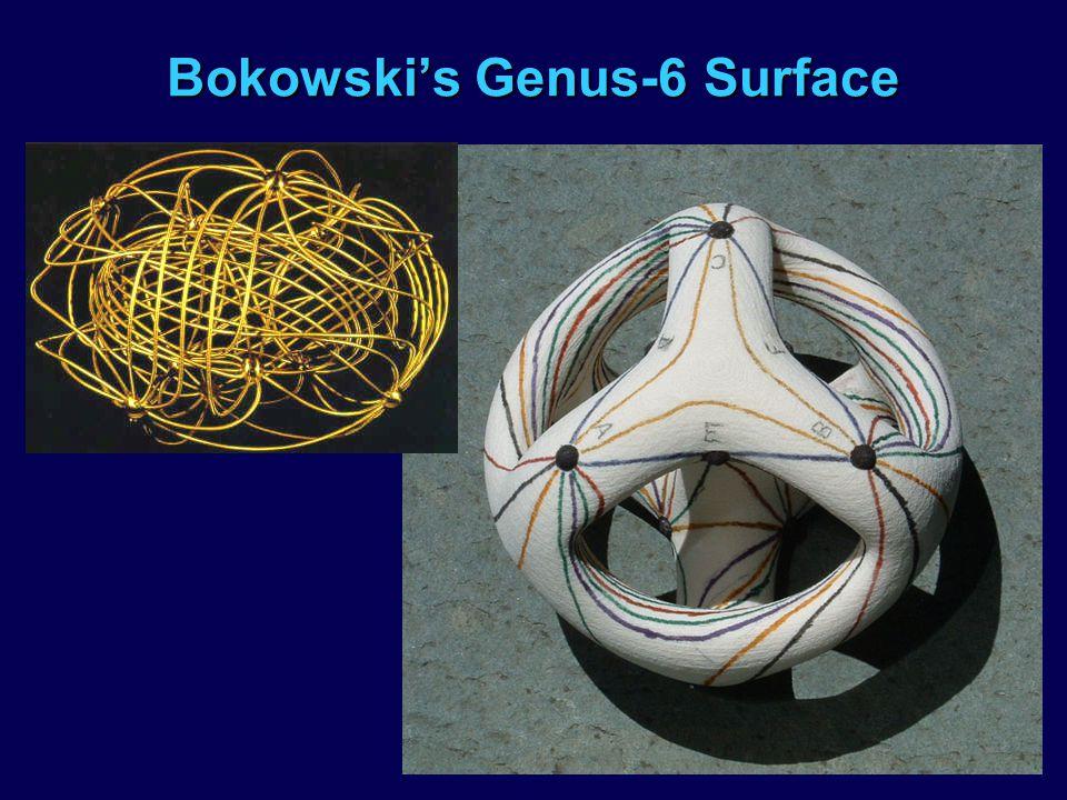 Bokowskis Genus-6 Surface