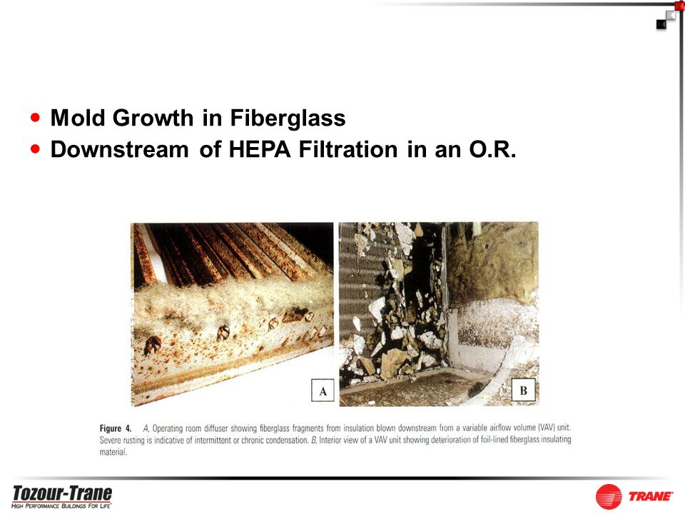 Mold Growth in Fiberglass Downstream of HEPA Filtration in an O.R.