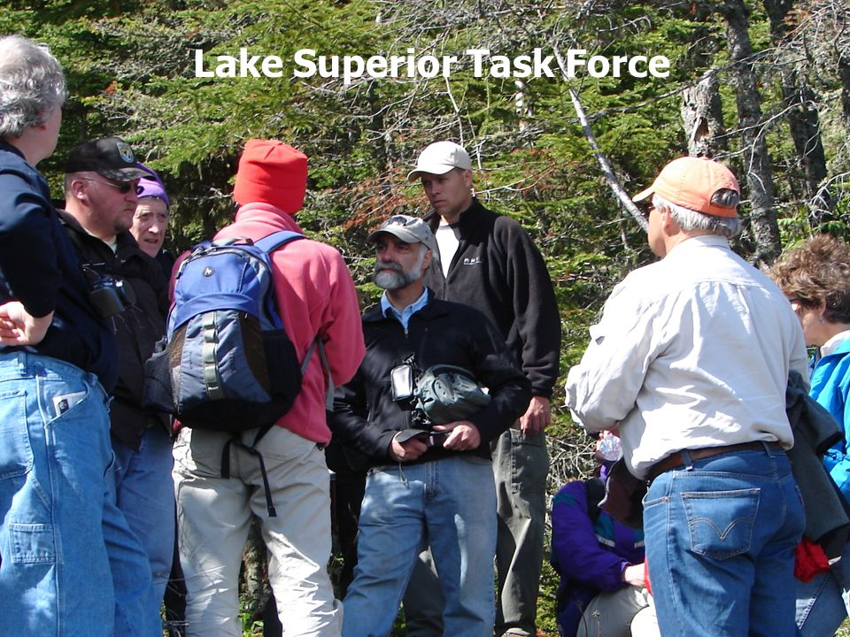 Lake Superior Work Group Lake Superior Task Force