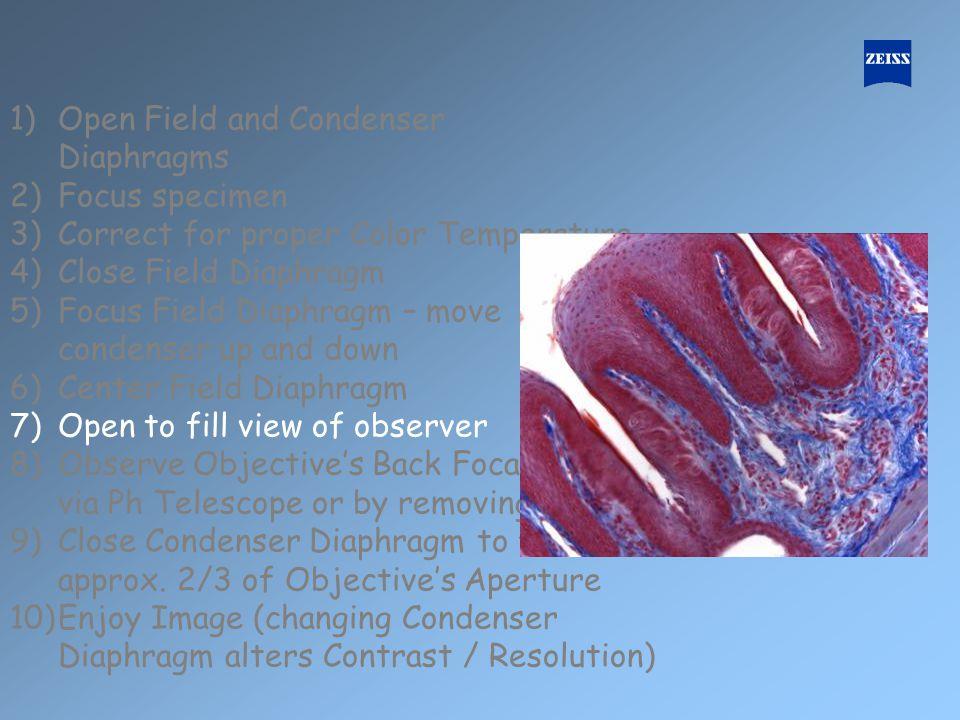 1)Open Field and Condenser Diaphragms 2)Focus specimen 3)Correct for proper Color Temperature 4)Close Field Diaphragm 5)Focus Field Diaphragm – move c