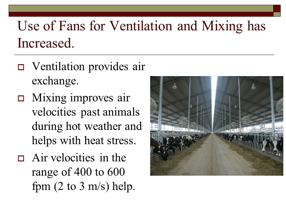 Use of Fans for Ventilation and Mixing has Increased. Ventilation provides air exchange. Mixing improves air velocities past animals during hot weathe
