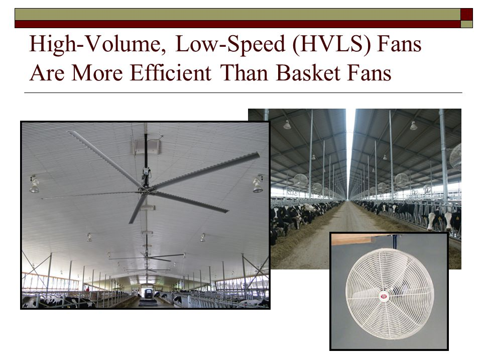 High-Volume, Low-Speed (HVLS) Fans Are More Efficient Than Basket Fans