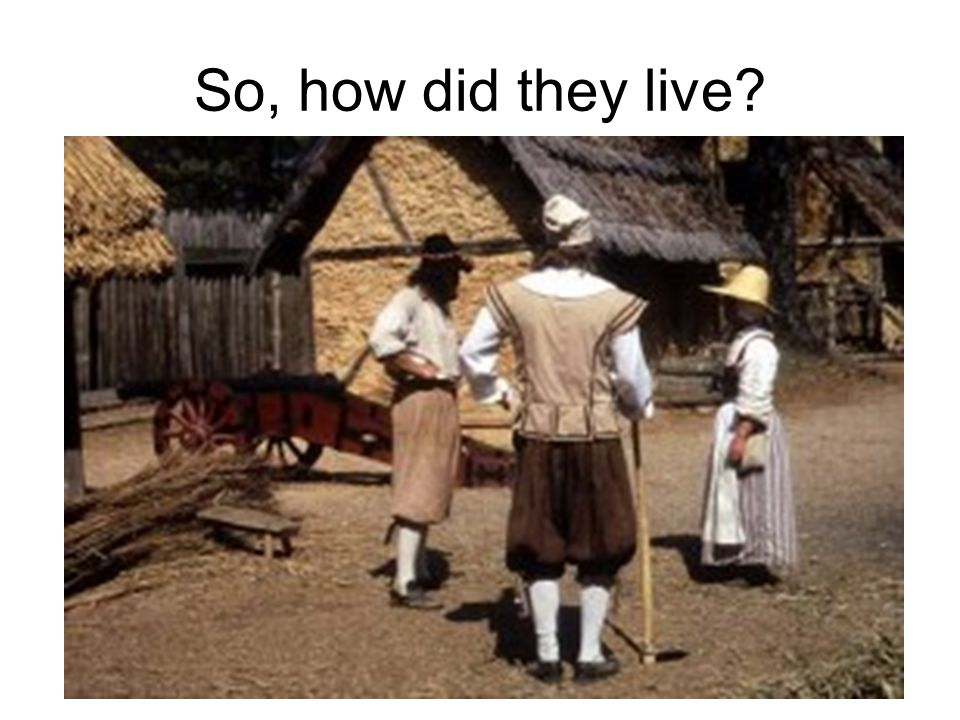 So, how did they live?