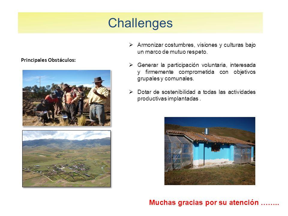 Challenges Principales Obstáculos: Armonizar costumbres, visiones y culturas bajo un marco de mutuo respeto.