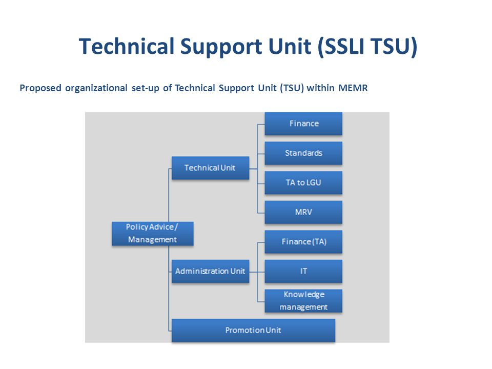 Proposed organizational set-up of Technical Support Unit (TSU) within MEMR