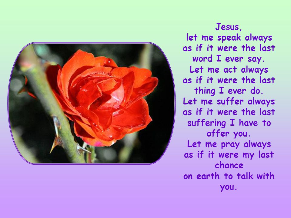 Some time ago I spontaneously voiced this prayer to God: