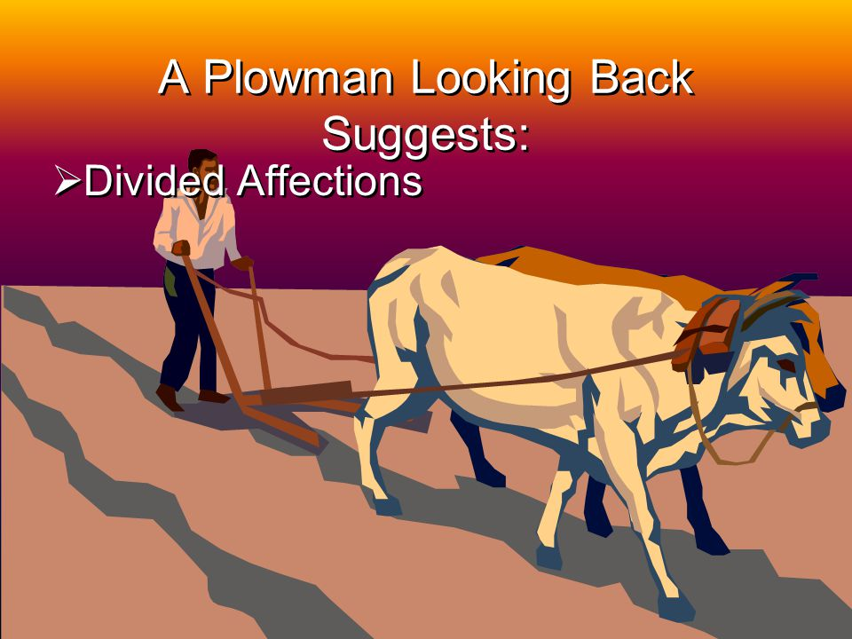2 A Plowman Looking Back Suggests: Divided Affections