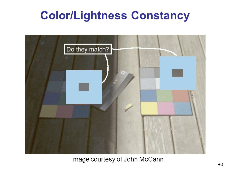48 Color/Lightness Constancy Image courtesy of John McCann
