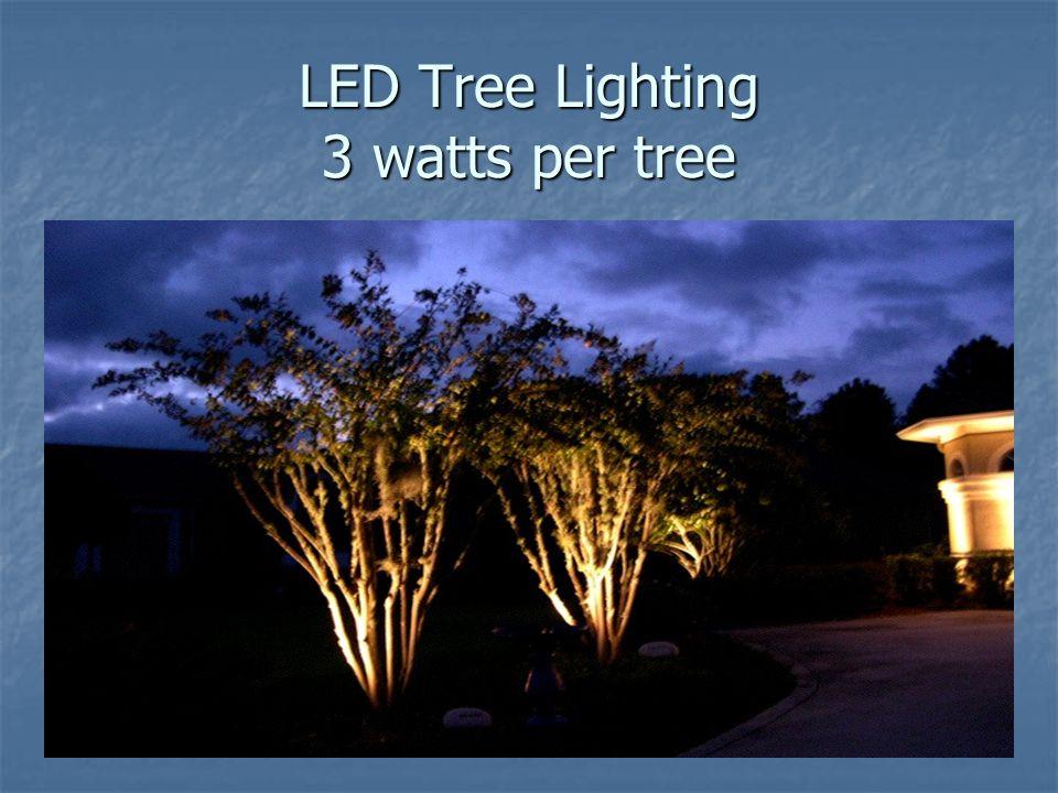 LED Tree Lighting 3 watts per tree