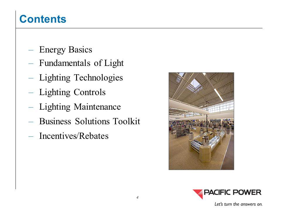 4 –Energy Basics –Fundamentals of Light –Lighting Technologies –Lighting Controls –Lighting Maintenance –Business Solutions Toolkit –Incentives/Rebate