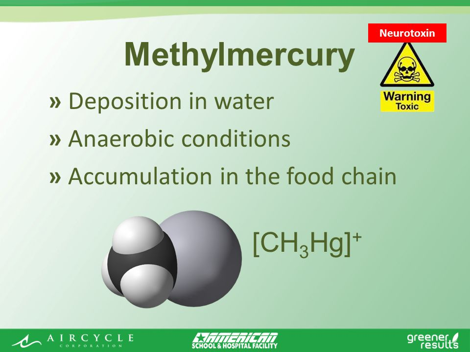 » Deposition in water » Anaerobic conditions » Accumulation in the food chain Methylmercury Neurotoxin [CH 3 Hg] +