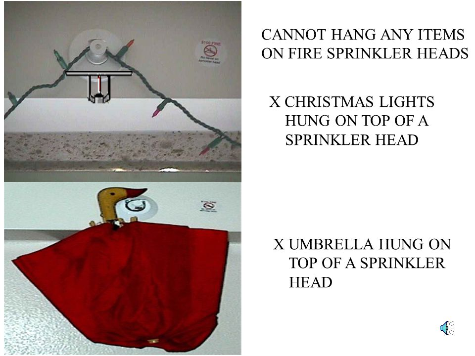 CANNOT HANG ANY ITEMS ON FIRE SPRINKLER HEADS X CHRISTMAS LIGHTS HUNG ON TOP OF A SPRINKLER HEAD X UMBRELLA HUNG ON TOP OF A SPRINKLER HEAD