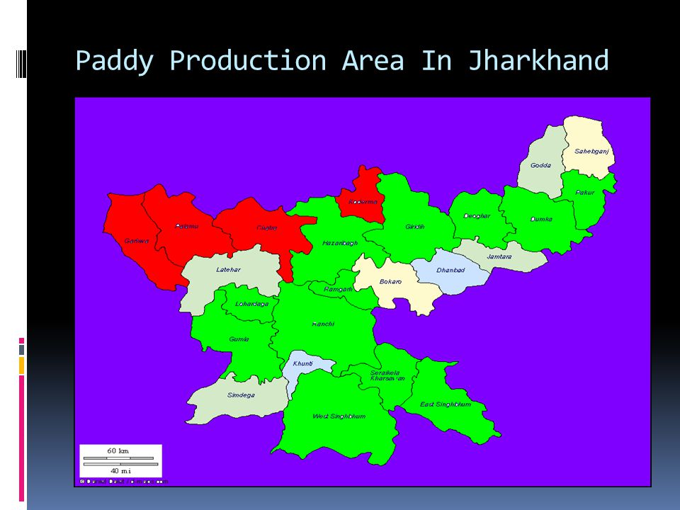 Paddy Production Area In Jharkhand