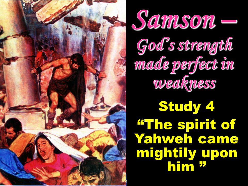 Study 5 – Samsons fatal brinkmanship
