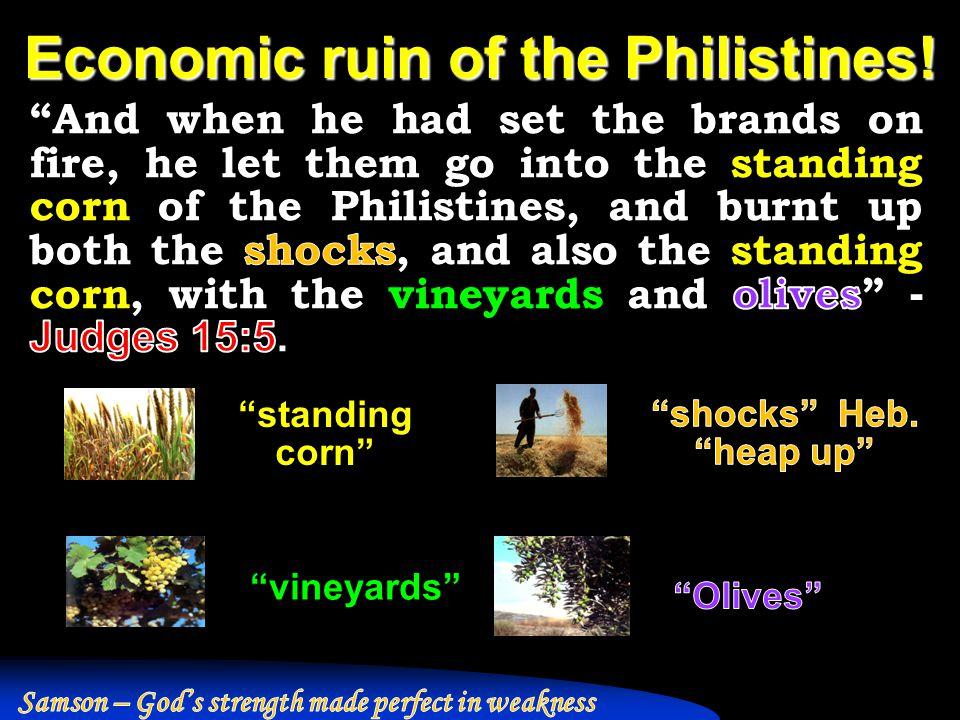 Economic ruin of the Philistines! standing corn vineyards